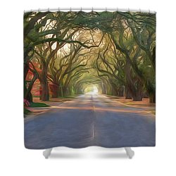 Aiken South Boundary Avenue Shower Curtain