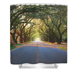 Aiken South Boundary II Shower Curtain