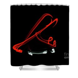 Aikido - Shihonage, Ura Shower Curtain