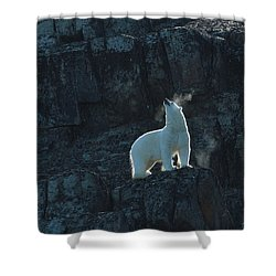 Air Apparent  Shower Curtain
