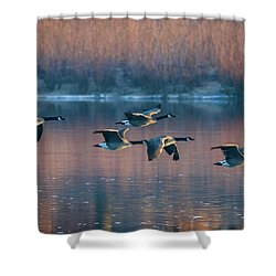 Shower Curtain featuring the photograph Air Canada by Ricky L Jones