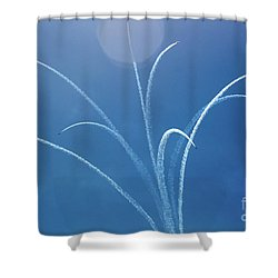 Air Show 5 Shower Curtain
