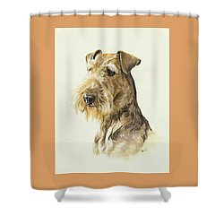 Airedale Shower Curtain by Barbara Keith