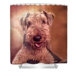 Airedale Shower Curtain by Carol Cavalaris