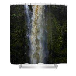 Shower Curtain featuring the photograph Akaka Falls by Ellen Heaverlo