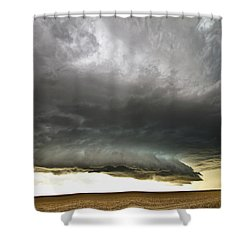 Akron Co Beast Shower Curtain