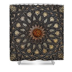 Al Ishaqi Wood Panel Shower Curtain by Nigel Fletcher-Jones