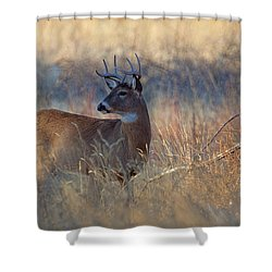 Shower Curtain featuring the photograph Alarm by Jim Garrison