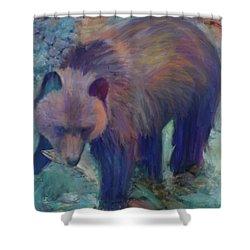 Alaska Bear  Shower Curtain