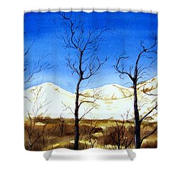 Alaska Blue Sky Day  Shower Curtain by Brenda Owen