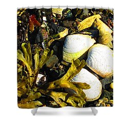 Alaska Clams Shower Curtain