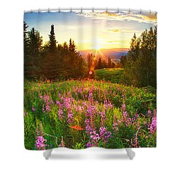 Alaska Field Shower Curtain