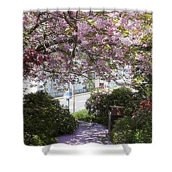 Alaska In Blossom Shower Curtain