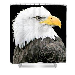 Alaskan Bald Eagle Shower Curtain by Merton Allen