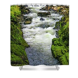 Alaskan Creek Shower Curtain