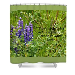 Shower Curtain featuring the photograph Alaskan Lupine Heaven by Diane E Berry