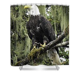 Alaskan Regality Shower Curtain