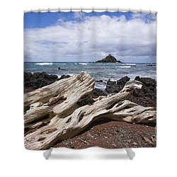 Alau Islet, Driftwood Shower Curtain by Ron Dahlquist - Printscapes