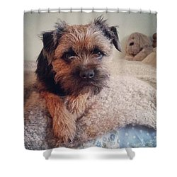Albert Portrait Shower Curtain