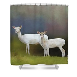 Albino Deer Shower Curtain by Marion Johnson