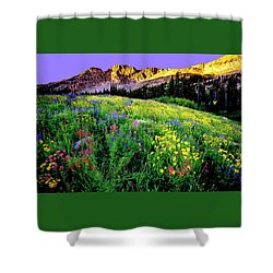 Albion Meadows Shower Curtain