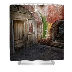 Alcatraz #2 Shower Curtain