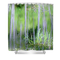Alder Reflections Shower Curtain by Sheila Ping