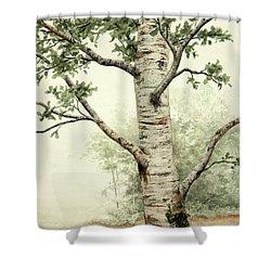 Alder Tree Shower Curtain