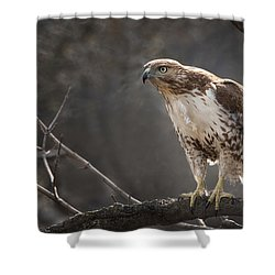 Alert And Ready Shower Curtain