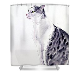 Alert Cat Shower Curtain