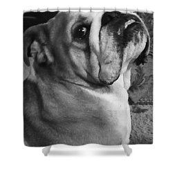Alfred Hitchcock Bullie Pose Shower Curtain