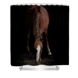Alfresco Shower Curtain