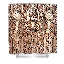 Alhambra Wall Section Shower Curtain