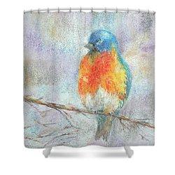 Alight Shower Curtain