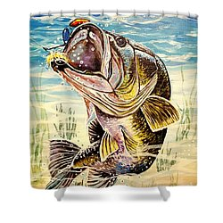 All About The Bass Shower Curtain by Sandra Lett