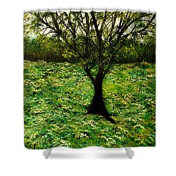 All Around The Turmoil Shower Curtain