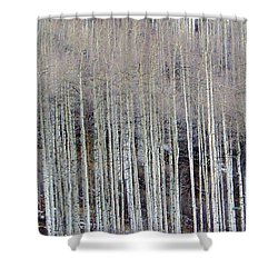All Aspen Shower Curtain