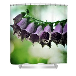 All Becomes Festival Shower Curtain by Rebecca Sherman