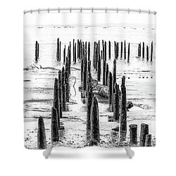 All That Is Left Shower Curtain by Joe Hudspeth