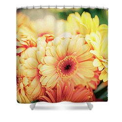 Shower Curtain featuring the photograph All The Daisies by Ana V Ramirez
