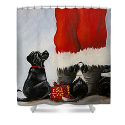 All The Fur Kids Love Santa Shower Curtain