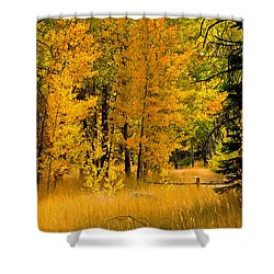 All The Soft Places To Fall Shower Curtain by Mitch Shindelbower