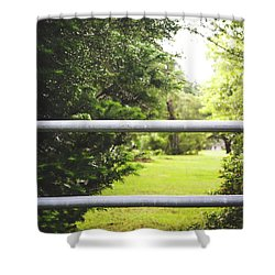 Shower Curtain featuring the photograph All Things Green by Shelby Young