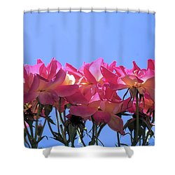All Together Now Shower Curtain