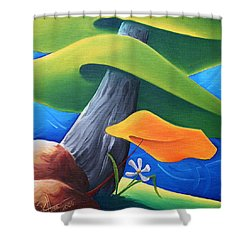All Under One Roof Shower Curtain by Richard Hoedl