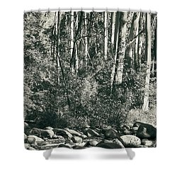 Shower Curtain featuring the photograph All Was Tranquil by Linda Lees