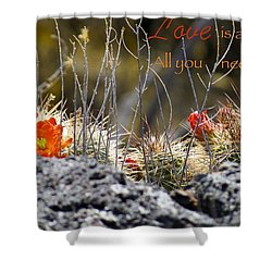 Shower Curtain featuring the photograph All We Need by David Norman