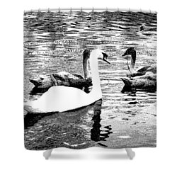 Shower Curtain featuring the photograph All You Need Is Love  by Fine Art By Andrew David