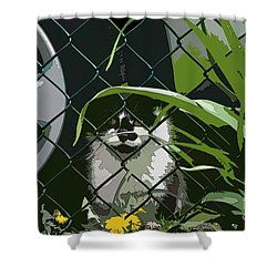 Alley Cat Shower Curtain by Reb Frost