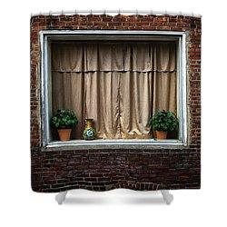 Alley Window Detail Shower Curtain